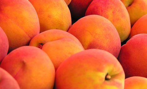 Food Facts : Peaches - Indian Recipes - Blogexplore
