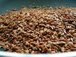 adding flax seeds for flax seeds podi