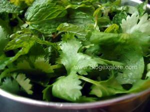 fresh dhaniya and pudina for mint coriander chutney
